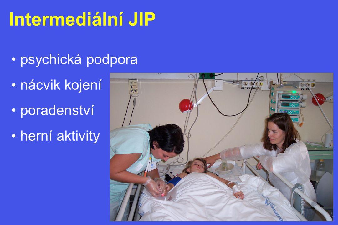 Intermediální JIP • psychická podpora • nácvik kojení • poradenství • herní aktivity