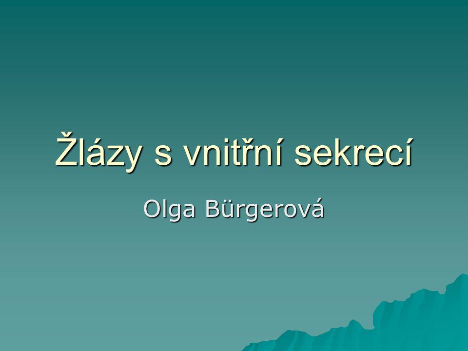 Žlázy s vnitřní sekrecí Olga Bürgerová