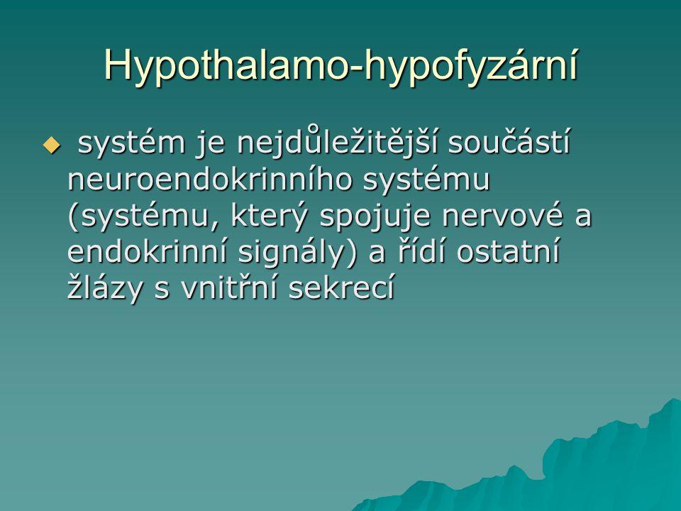 Hypothalamo-hypofyzární  systém je nejdůležitější součástí neuroendokrinního systému (systému, který spojuje nervové a endokrinní signály) a řídí ost