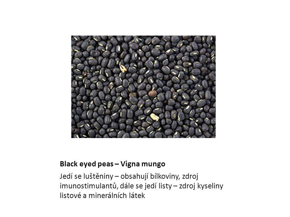 Black eyed peas – Vigna mungo Vigna mungo Jedí se luštěniny – obsahují bílkoviny, zdroj imunostimulantů, dále se jedí listy – zdroj kyseliny listové a