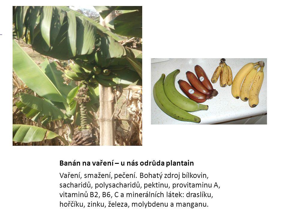 Banán na vaření – u nás odrůda plantain Vaření, smažení, pečení. Bohatý zdroj bílkovin, sacharidů, polysacharidů, pektinu, provitaminu A, vitaminů B2,