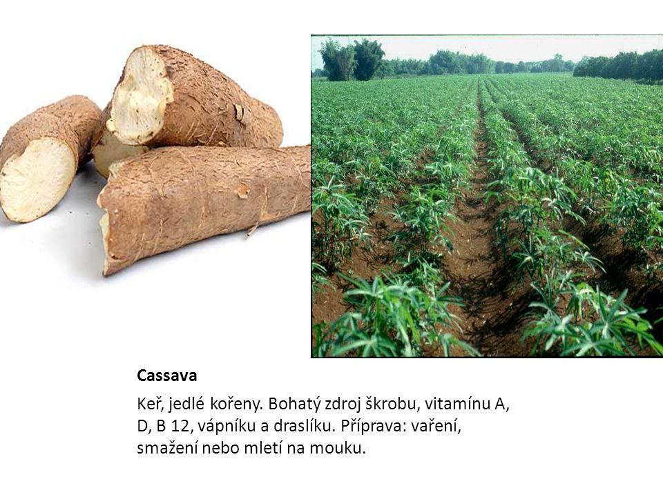 Cassava Keř, jedlé kořeny. Bohatý zdroj škrobu, vitamínu A, D, B 12, vápníku a draslíku. Příprava: vaření, smažení nebo mletí na mouku.
