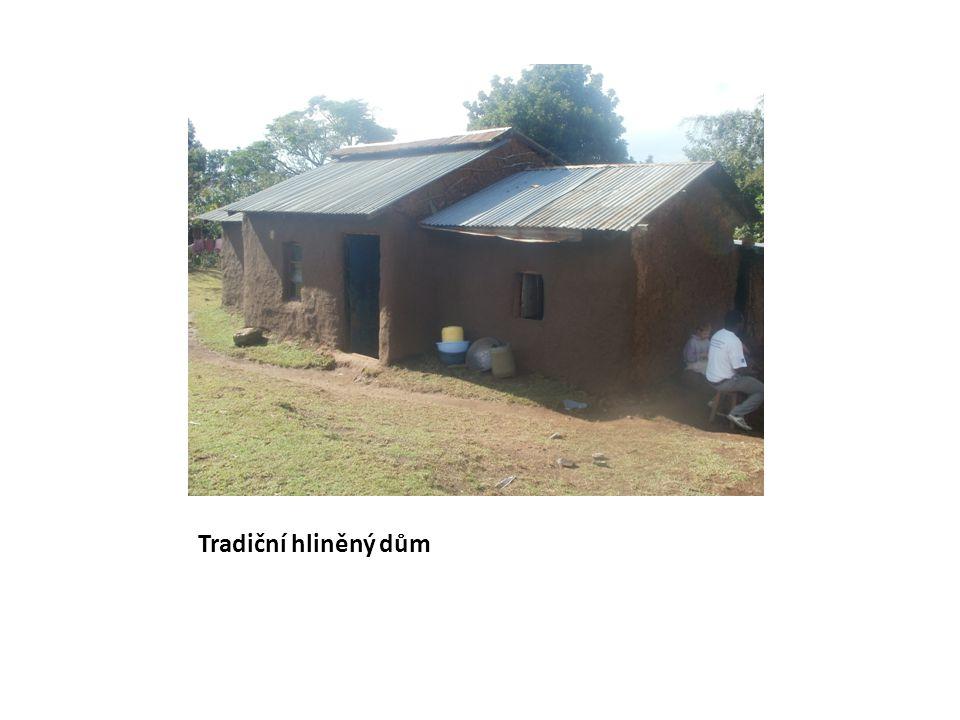 Tradiční hliněný dům