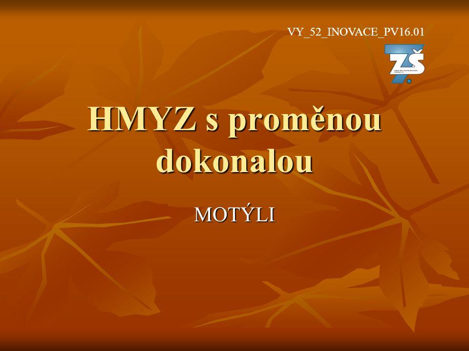 HMYZ s proměnou dokonalou MOTÝLI VY_52_INOVACE_PV16.01