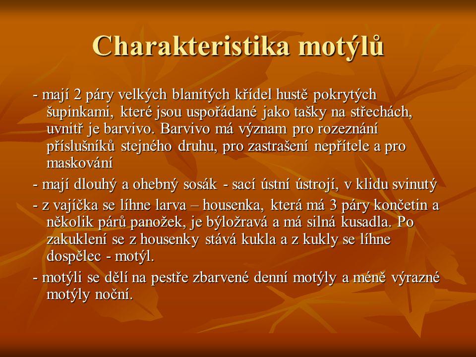Nejznámější zástupci  Babočka osiková  Babočka paví oko  Babočka admirál  Modrásek