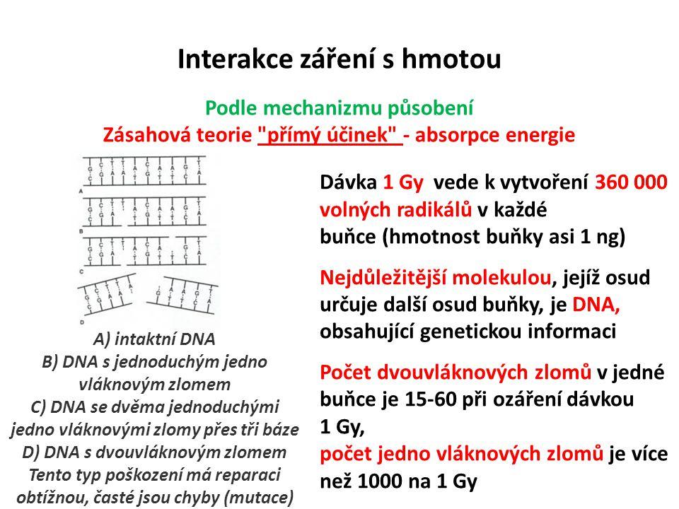 Interakce záření s hmotou Podle mechanizmu působení Zásahová teorie