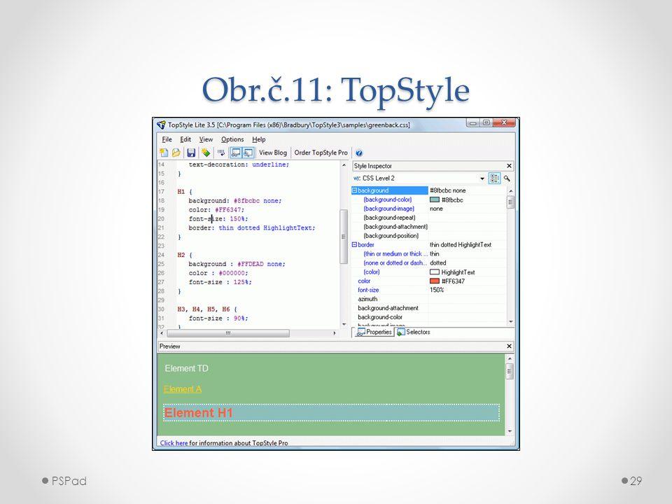 Obr.č.11: TopStyle PSPad29