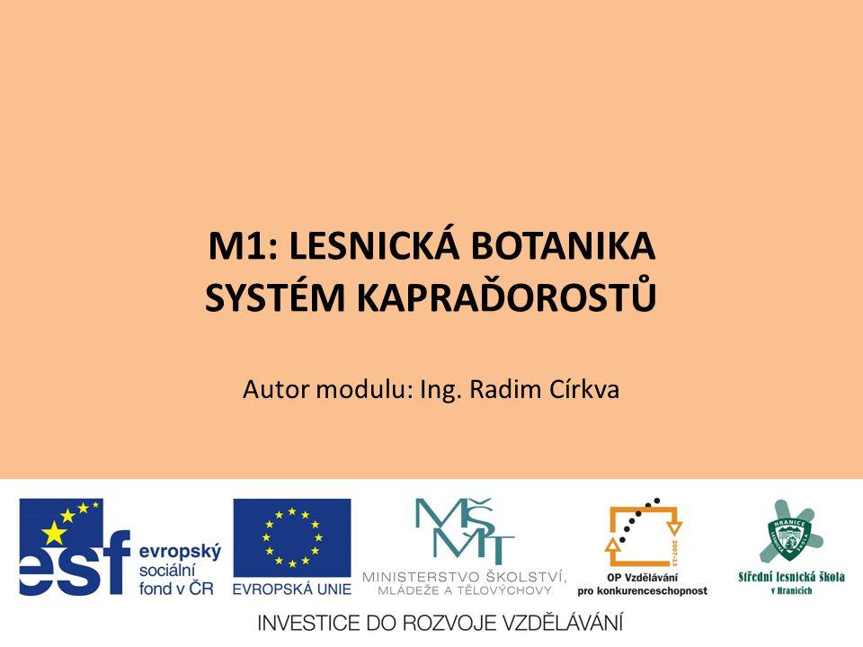 M1: LESNICKÁ BOTANIKA SYSTÉM KAPRAĎOROSTŮ Autor modulu: Ing. Radim Církva