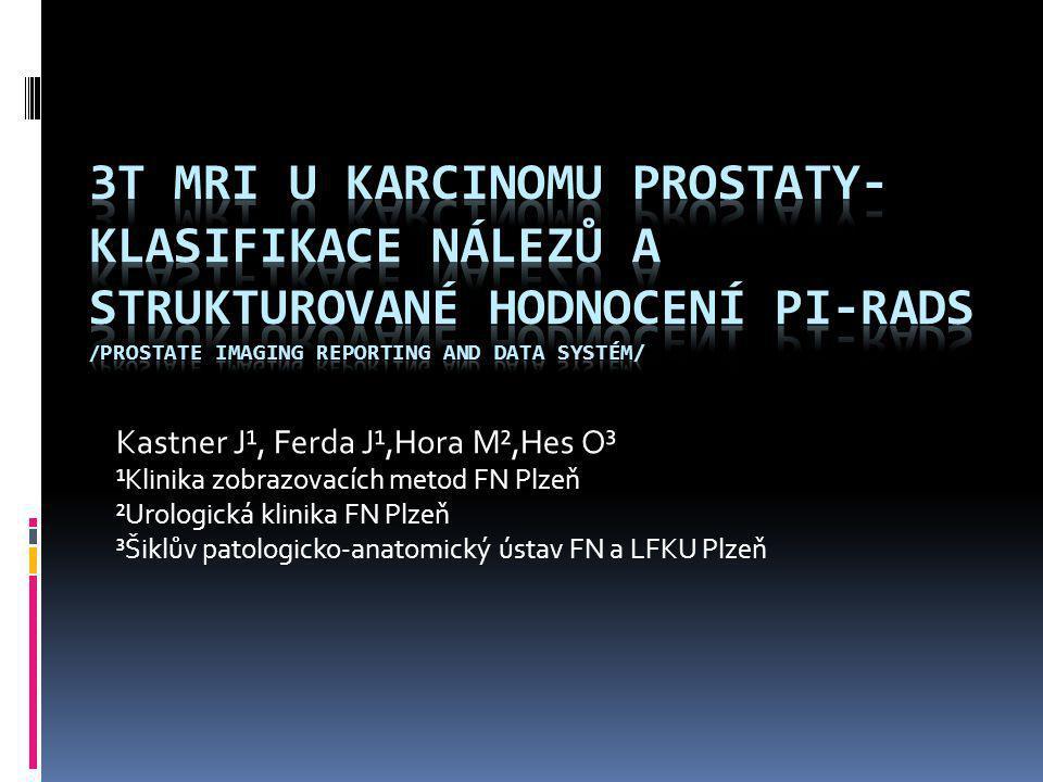 Kastner J¹, Ferda J¹,Hora M²,Hes O³ ¹Klinika zobrazovacích metod FN Plzeň ²Urologická klinika FN Plzeň ³Šiklův patologicko-anatomický ústav FN a LFKU