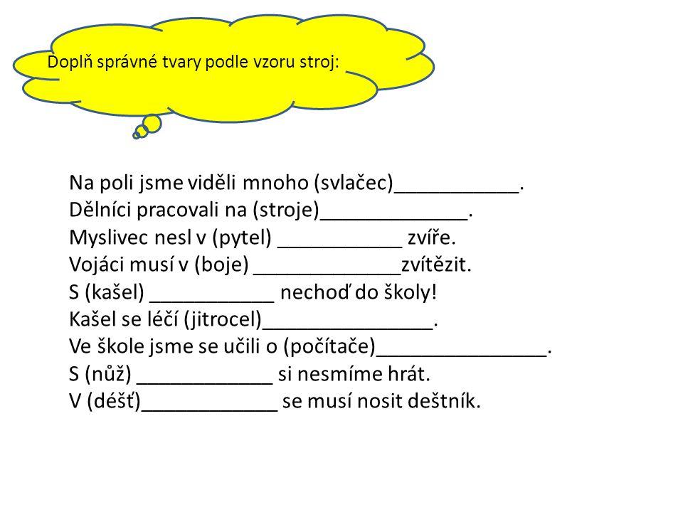 Doplň správné tvary podle vzoru stroj: Na poli jsme viděli mnoho (svlačec)___________.