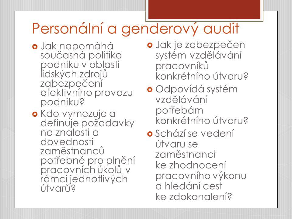 Personální a genderový audit  Jak napomáhá současná politika podniku v oblasti lidských zdrojů zabezpečení efektivního provozu podniku?  Kdo vymezuj
