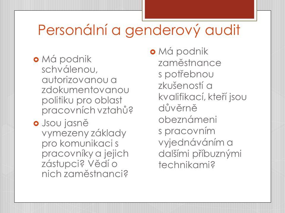 Personální a genderový audit  Má podnik schválenou, autorizovanou a zdokumentovanou politiku pro oblast pracovních vztahů?  Jsou jasně vymezeny zákl