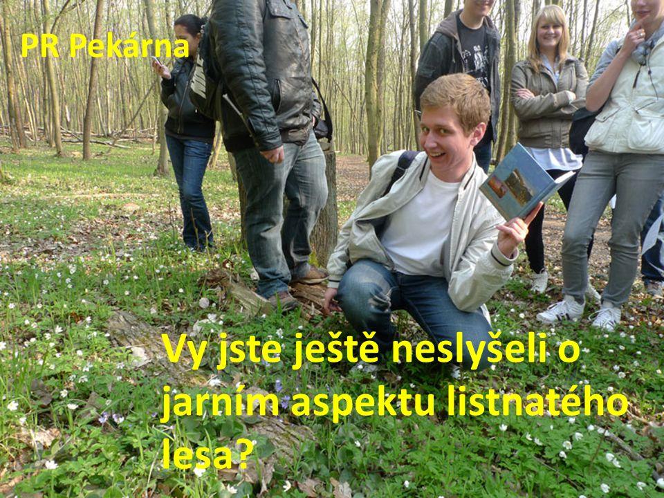 Vy jste ještě neslyšeli o jarním aspektu listnatého lesa PR Pekárna