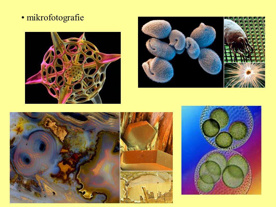 • mikrofotografie