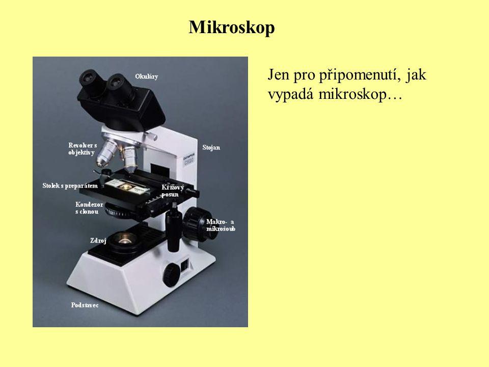 Mikroskop Jen pro připomenutí, jak vypadá mikroskop…