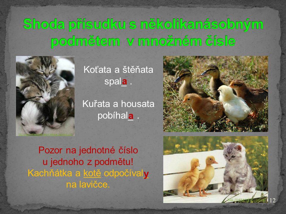 12 http://pejsanek111.blog.cz http://crazywithasideofawesomesauce.blogspot.com http://www.flickr.com Koťata a štěňata spal_. Kuřata a housata pobíhal_