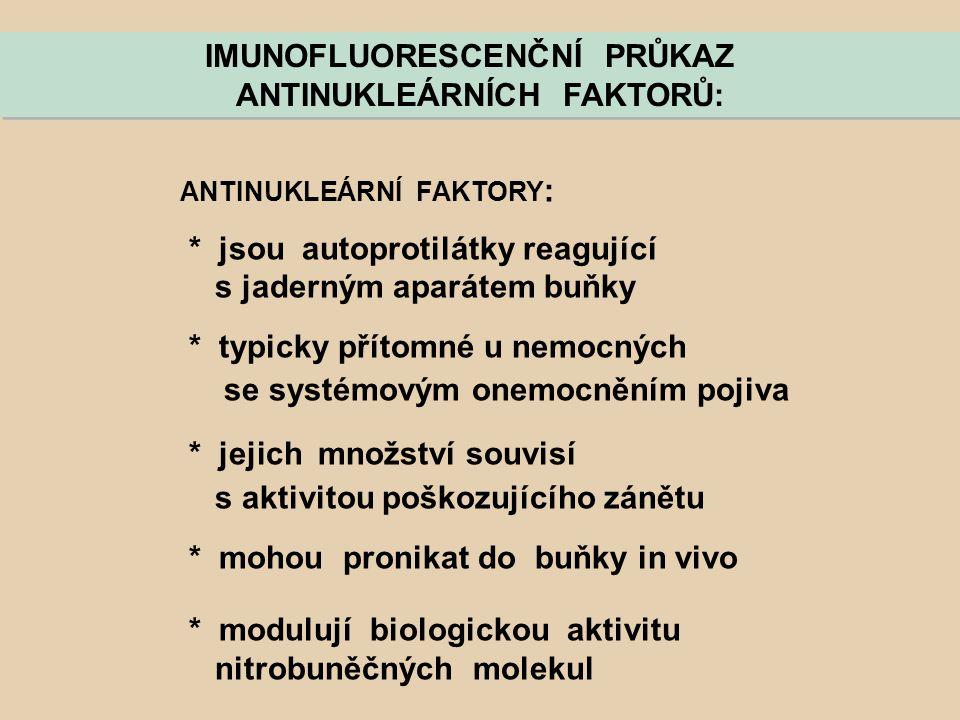 IMUNOFLUORESCENČNÍ PRŮKAZ ANTINUKLEÁRNÍCH FAKTORŮ: IMUNOFLUORESCENČNÍ PRŮKAZ ANTINUKLEÁRNÍCH FAKTORŮ: ANTINUKLEÁRNÍ FAKTORY : * jsou autoprotilátky re