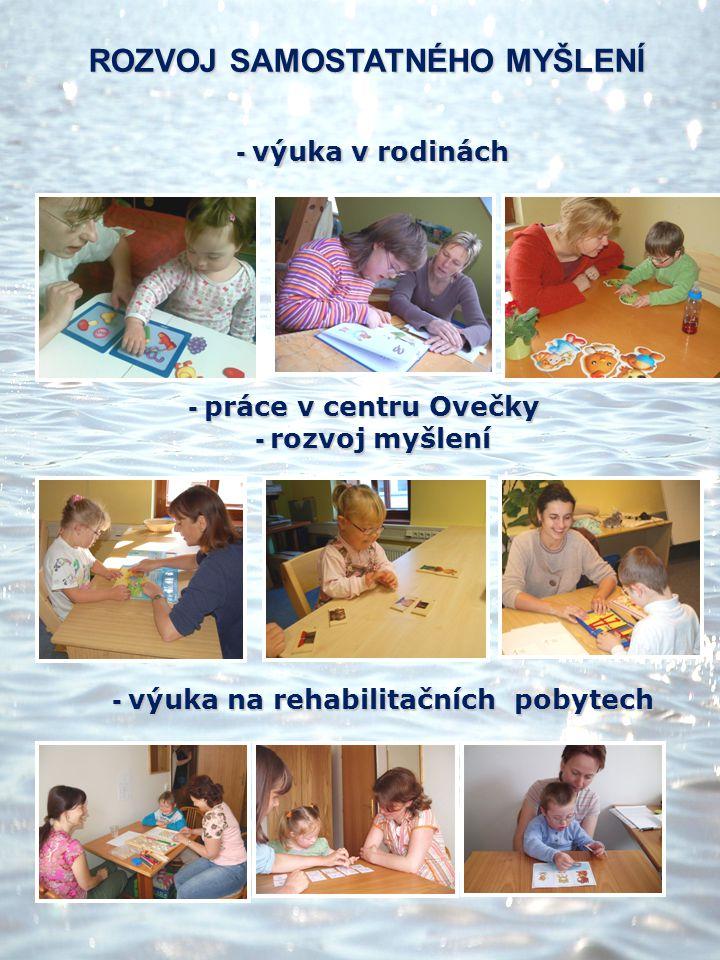 - výuka v rodinách - výuka v rodinách - práce v centru Ovečky - práce v centru Ovečky - rozvoj myšlení - rozvoj myšlení - výuka na rehabilitačních pob