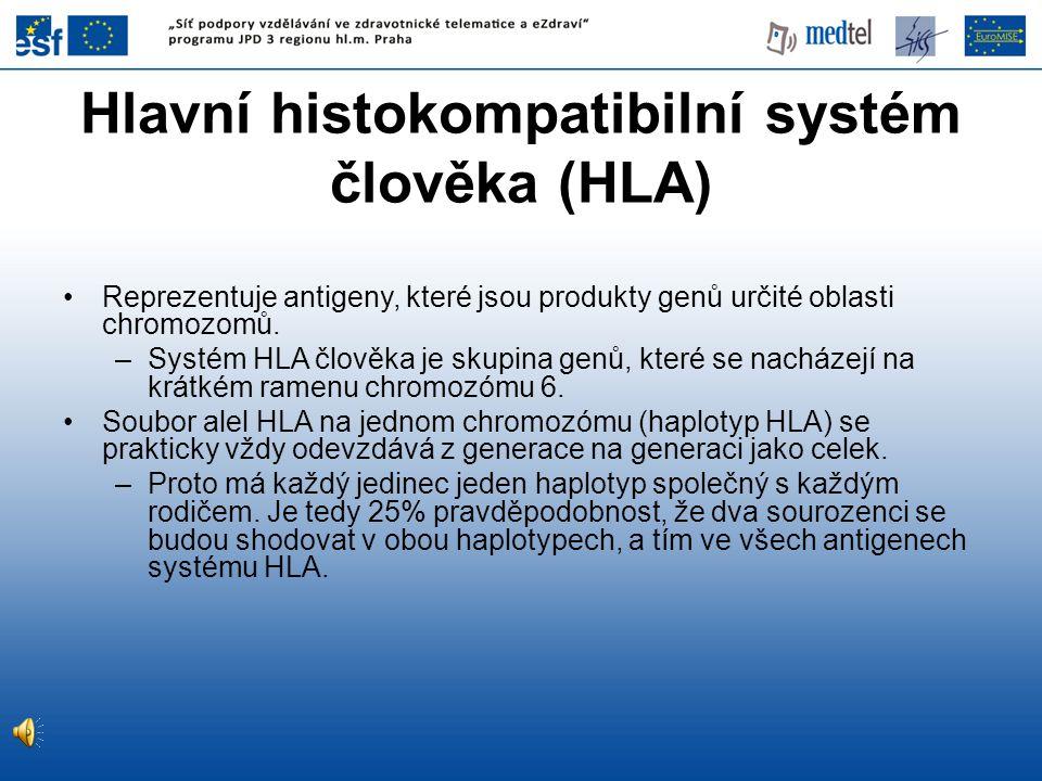 Hlavní histokompatibilní systém člověka (HLA) •Reprezentuje antigeny, které jsou produkty genů určité oblasti chromozomů. –Systém HLA člověka je skupi