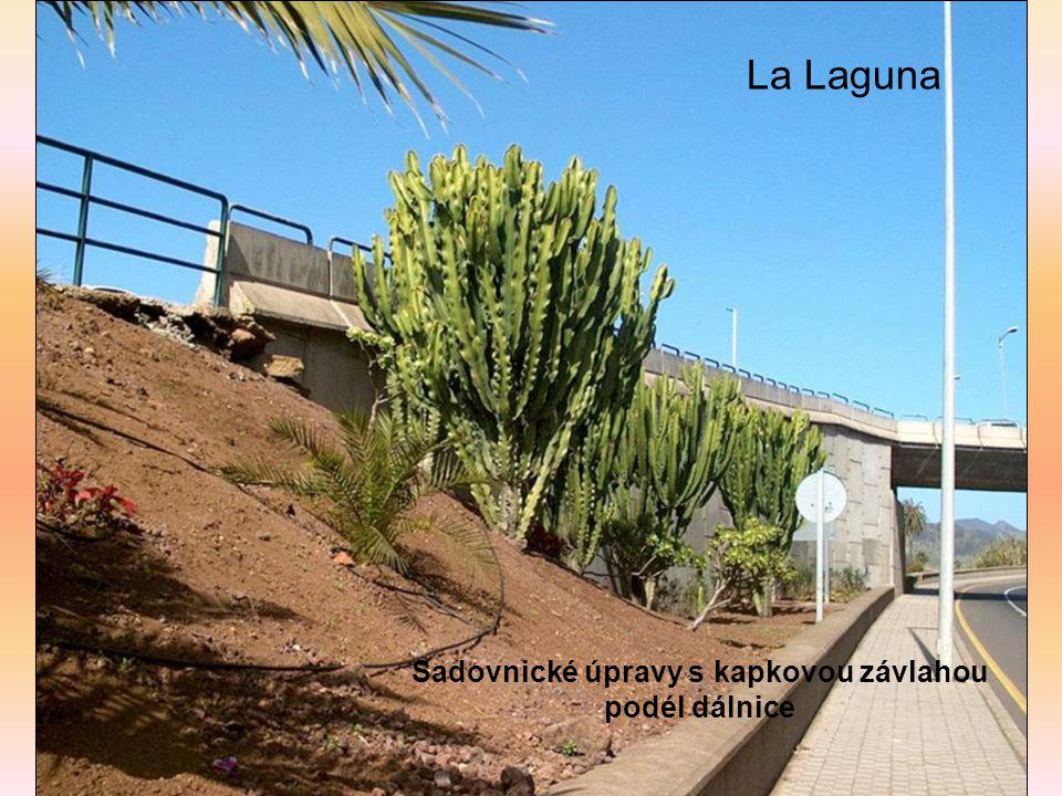 La Laguna Sadovnické úpravy s kapkovou závlahou podél dálnice