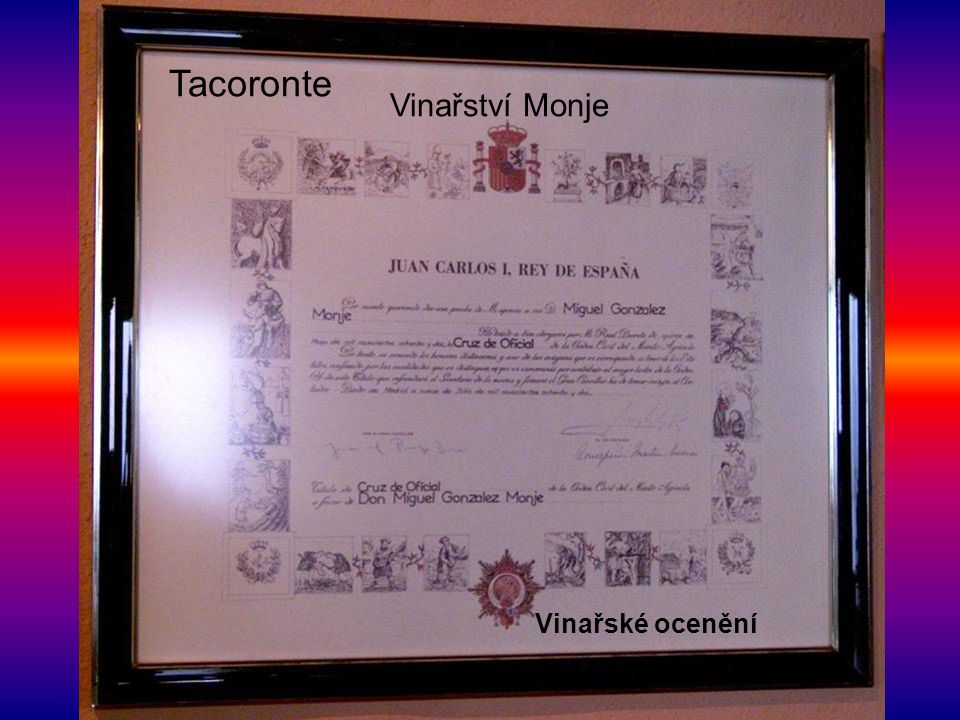 Vinařské ocenění Tacoronte Vinařství Monje