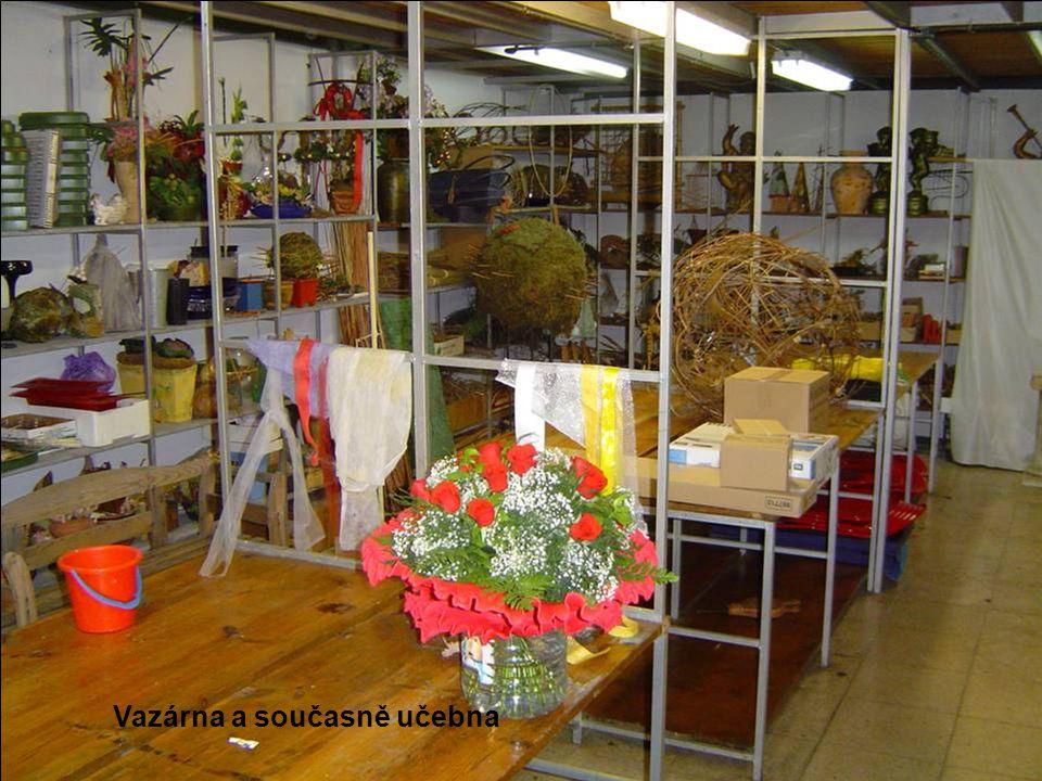 Pargue nacional del Teide Uschlý exemplář endemického Hadince Wildpretova (Echinum wildpretii)