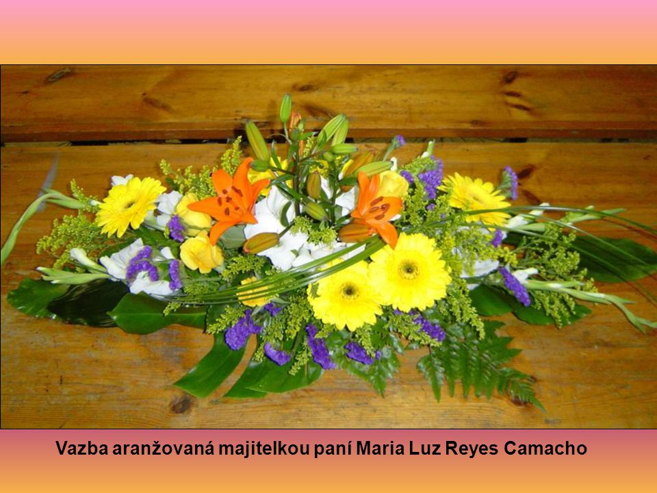 Vazba aranžovaná majitelkou paní Maria Luz Reyes Camacho