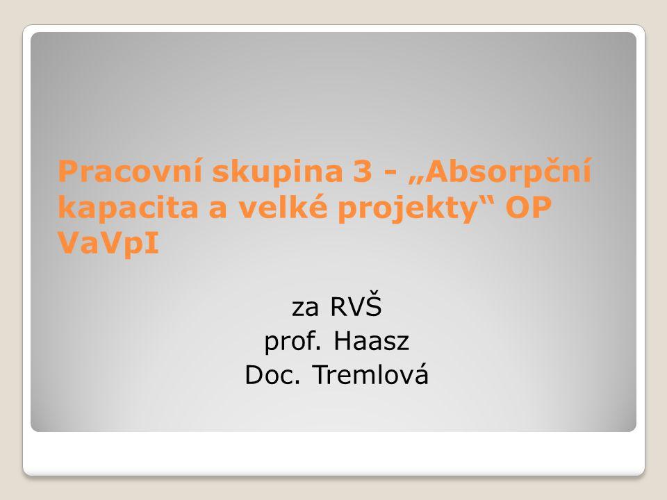 """Pracovní skupina 3 - """"Absorpční kapacita a velké projekty"""" OP VaVpI za RVŠ prof. Haasz Doc. Tremlová"""