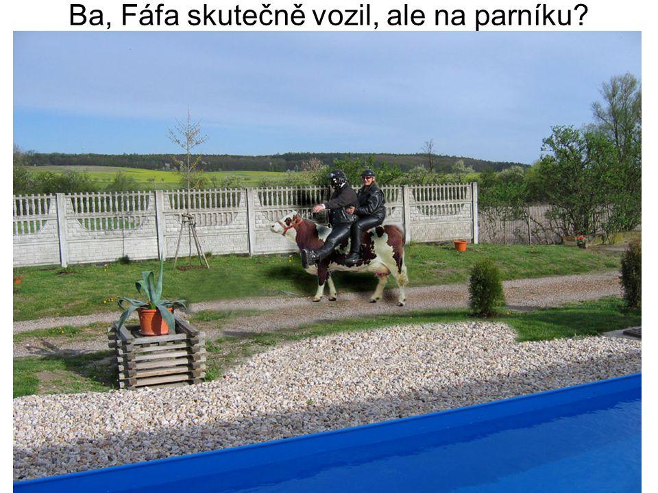 Ba, Fáfa skutečně vozil, ale na parníku?