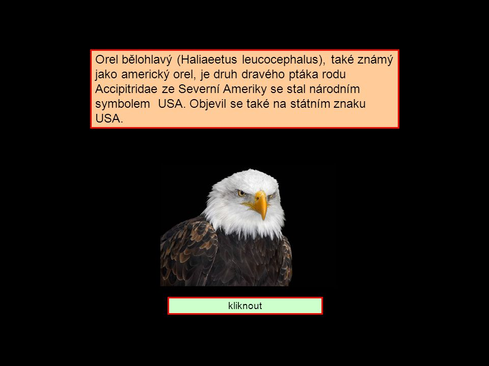 Komu patří symbol Orel U S A Peru Nepal
