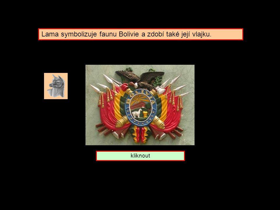 Koho symbolizuje lama ? Bolivie Peru Chile