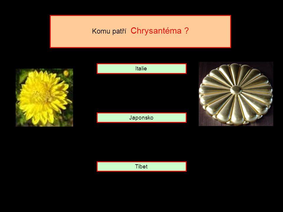 Bengálský tygr, páv a lotosový květ to jsou jen některé z indických symbolů. klinknout