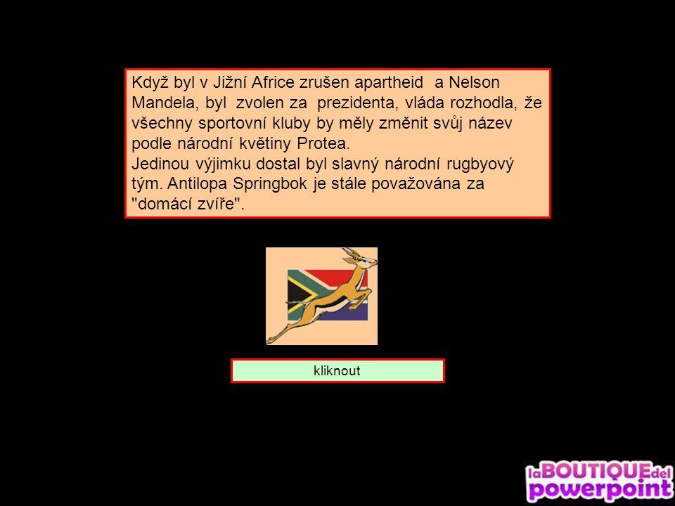 To je gazela skákavá. Ze které je země ? Jižní Afrika Keňa Tanzanie