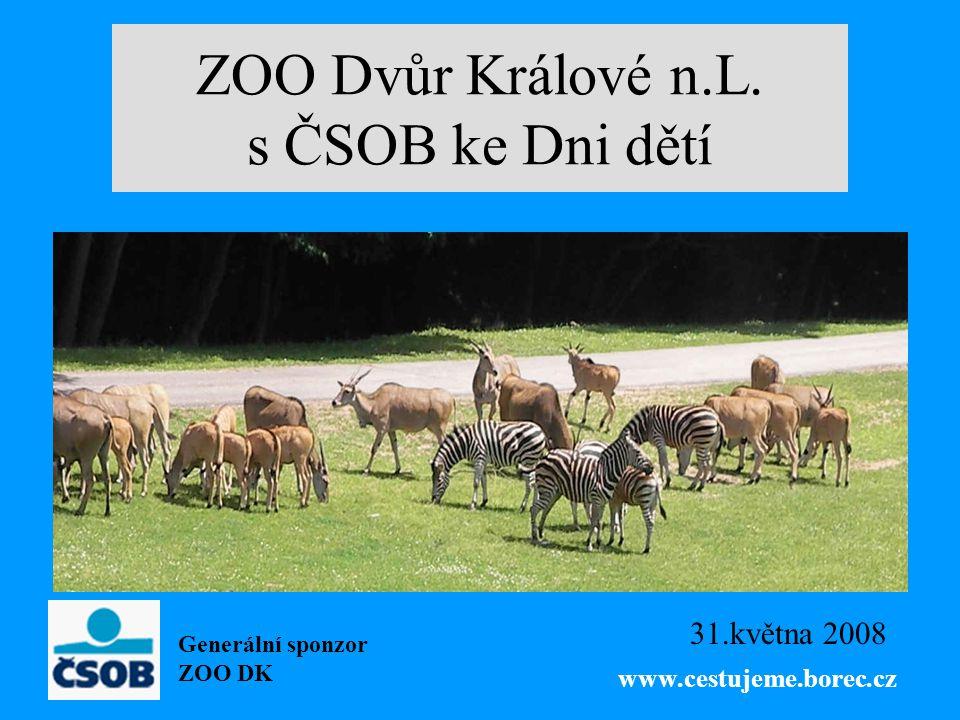 ZOO Dvůr Králové n.L. s ČSOB ke Dni dětí 31.května 2008 Generální sponzor ZOO DK www.cestujeme.borec.cz