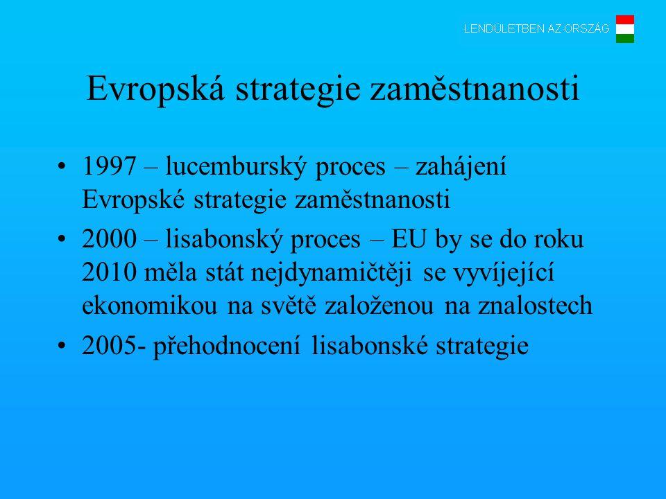 Evropská strategie zaměstnanosti •1997 – lucemburský proces – zahájení Evropské strategie zaměstnanosti •2000 – lisabonský proces – EU by se do roku 2010 měla stát nejdynamičtěji se vyvíjející ekonomikou na světě založenou na znalostech •2005- přehodnocení lisabonské strategie