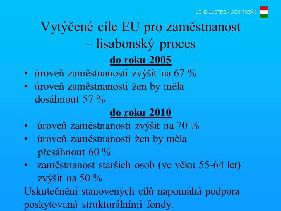 Maďarská strategie zaměstnanosti Na základě dokumentu nazvaného Národní akční program pro rozvoj a zaměstnanost: –rozšiřování zaměstnanosti, –zvyšování aktivity, –napomáhání procesu restrukturalizace, posilování flexibility.