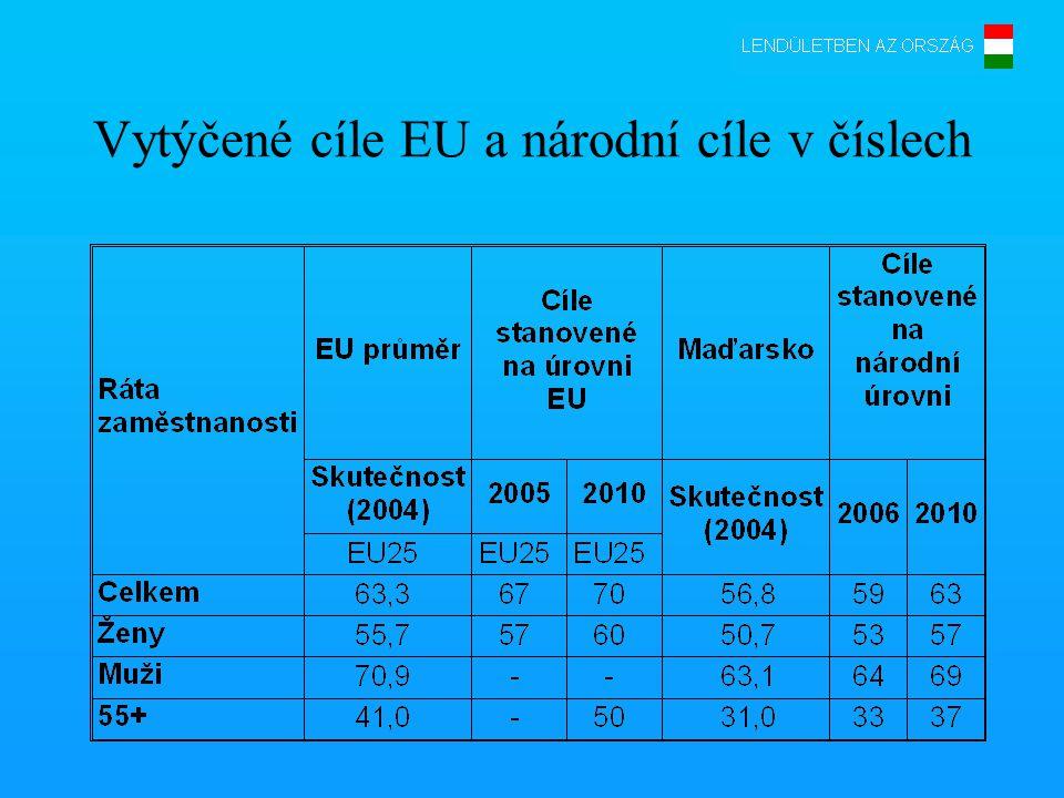 Charakteristika maďarského trhu s pracovními silami Nízká zaměstnanost a nízká nezaměstnanost: •poměr osob stojících trvale mimo trh s pracovními silami je vysoký •aktivita vyhledávání pracovních míst je nízká •značné oblastní rozdíly jak na straně poptávky po pracovních silách, tak na straně nabídky •zaměstnanost osob s nízkým vzděláním je mimořádně nízká