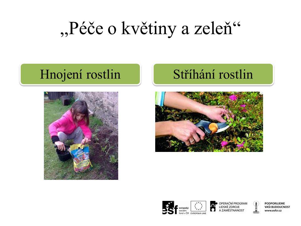 """""""Péče o květiny a zeleň"""" Hnojení rostlin Stříhání rostlin"""