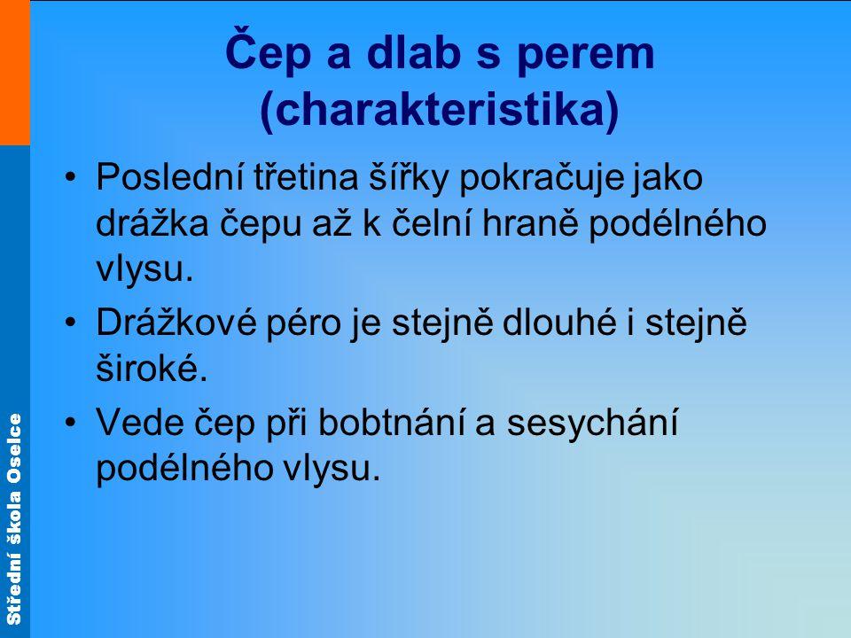 Střední škola Oselce Čep a dlab s perem (charakteristika) •Poslední třetina šířky pokračuje jako drážka čepu až k čelní hraně podélného vlysu.