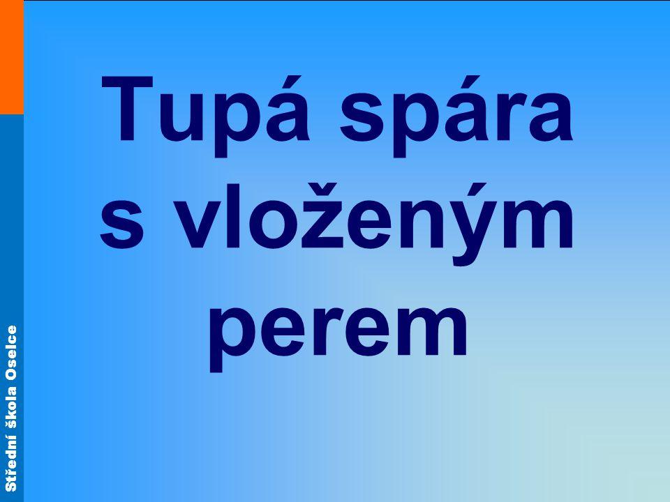 Střední škola Oselce Tupá spára s vloženým perem (zařazení) •Jedná se o rozšiřovací spoj.
