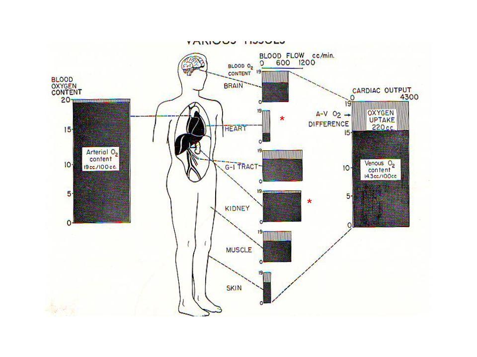 Krevní tlak (Pa – Pv) = Q / R