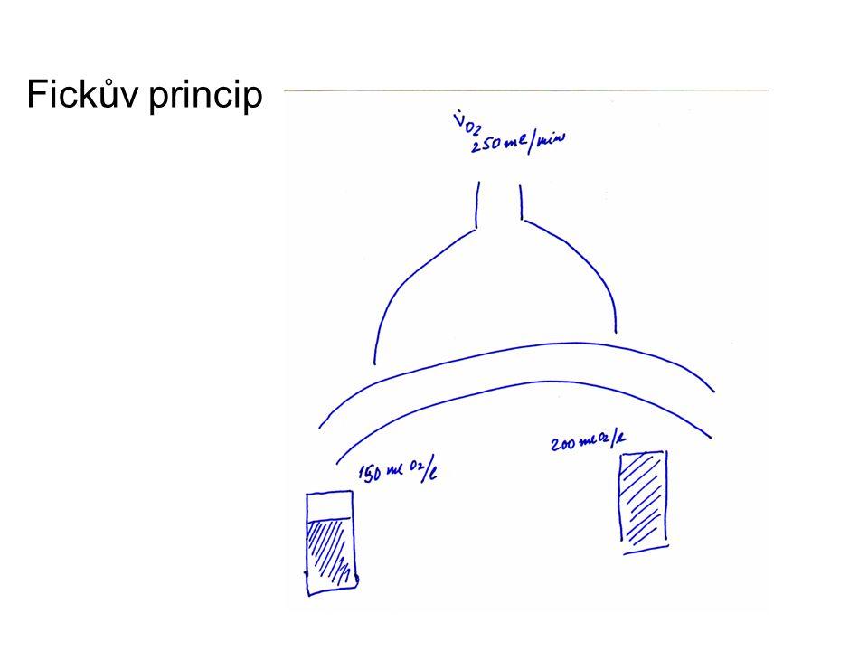 Fickův princip