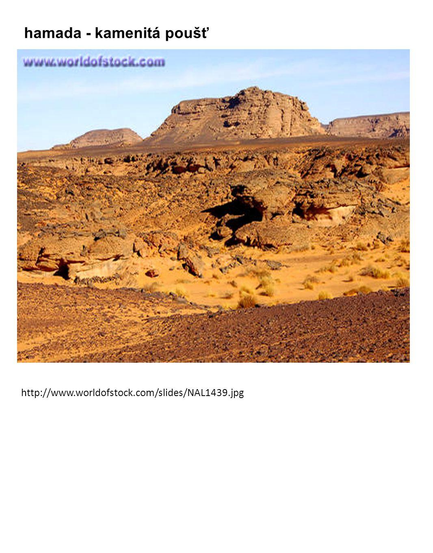 http://www.worldofstock.com/slides/NAL1439.jpg hamada - kamenitá poušť