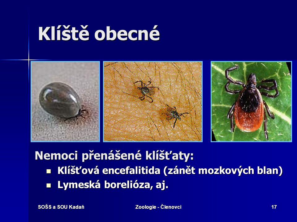 SOŠS a SOU KadaňZoologie - Členovci16 Řád: Roztoči  Všechny části těla srostlé v jeden celek.  Parazité rostlin – svilušky (chmelová, ovocná).  Par