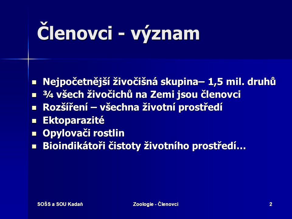 KMEN: ČLENOVCI Upraveno (pro ZŠ) z materiálu: http://biologie.amoskadan.cz Živočichové s nestejnocenně článkovaným tělem