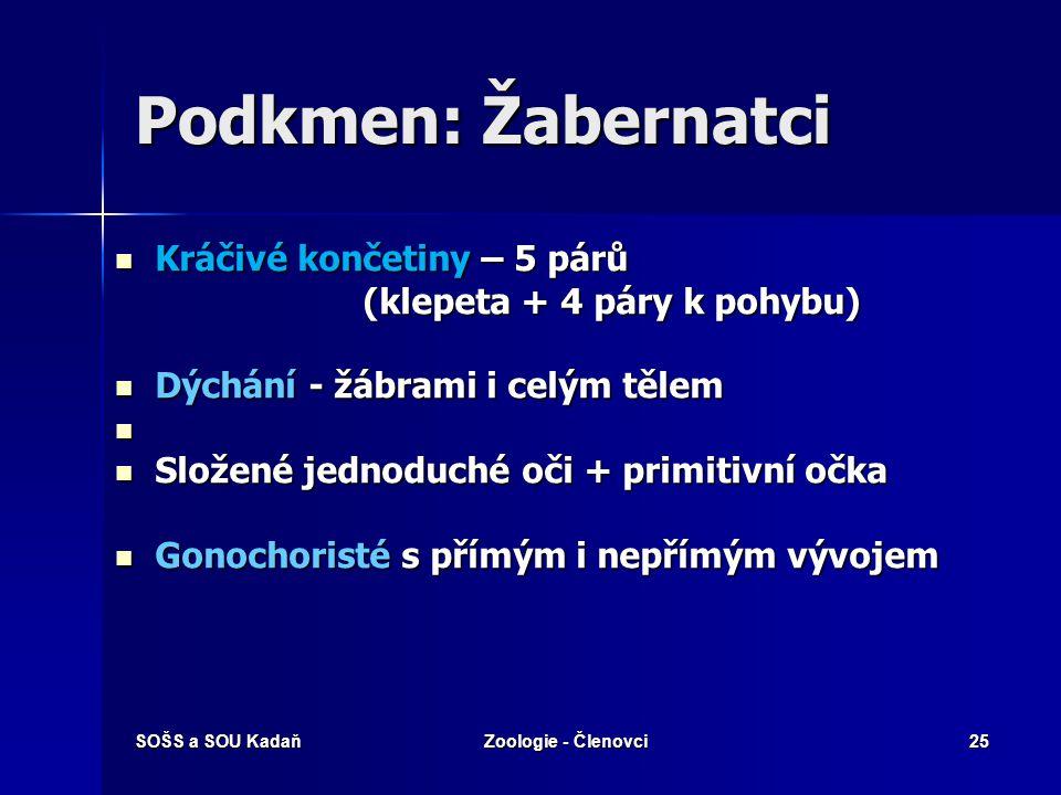 SOŠS a SOU KadaňZoologie - Členovci24 Podkmen: Žabernatci  Hlavně vodní živočichové (slaná i sladká)  Hlava, hruď, zadeček  Tělo - kryto štítem neb