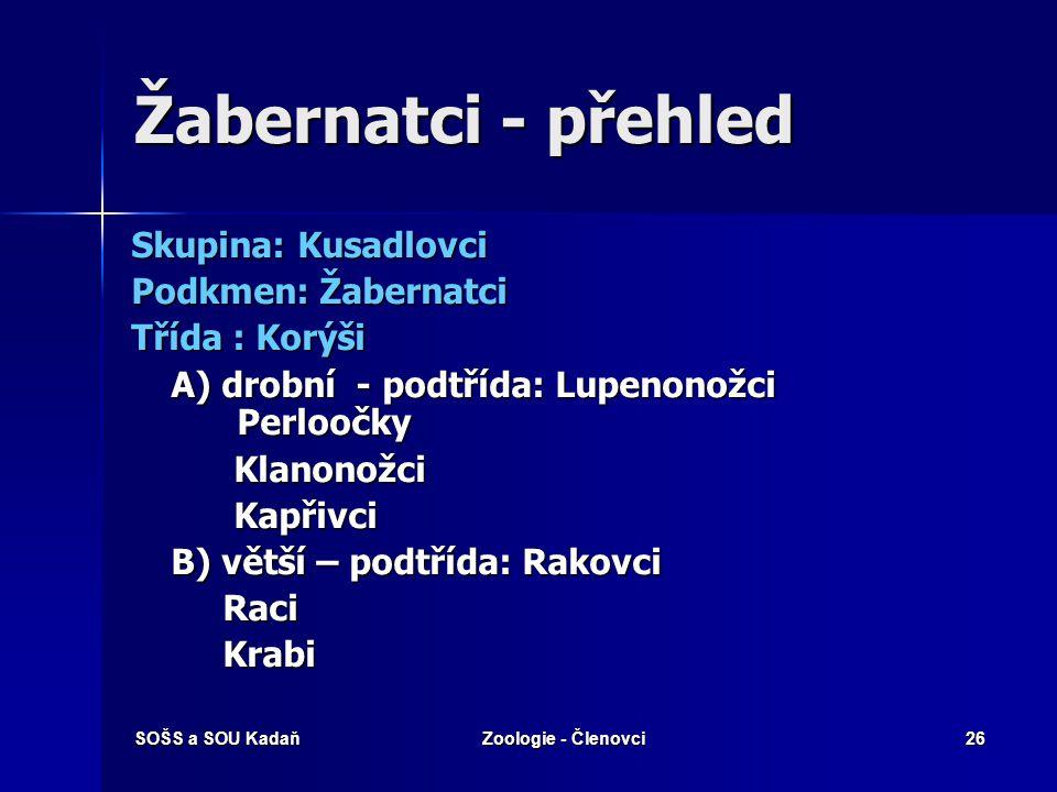 SOŠS a SOU KadaňZoologie - Členovci25 Podkmen: Žabernatci  Kráčivé končetiny – 5 párů (klepeta + 4 páry k pohybu) (klepeta + 4 páry k pohybu)  Dýchá