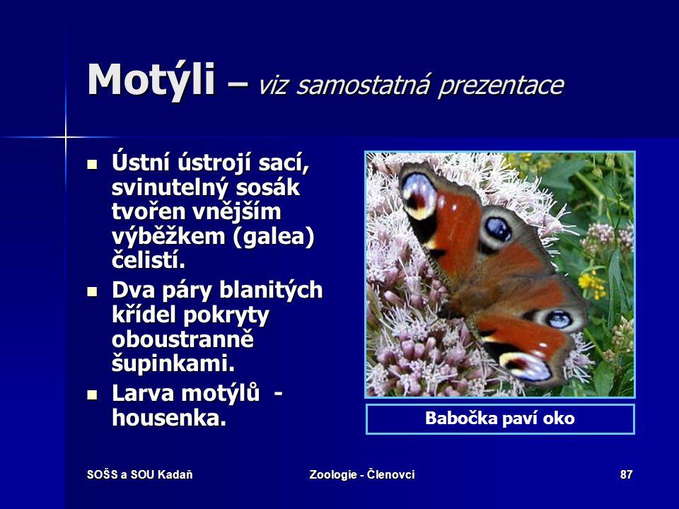 SOŠS a SOU KadaňZoologie - Členovci86 Blechy  Dospělé blechy jsou vnějšími, druhotně bezkřídlými (ekto-) parazity ptáků a savců, jejichž krví se živí.