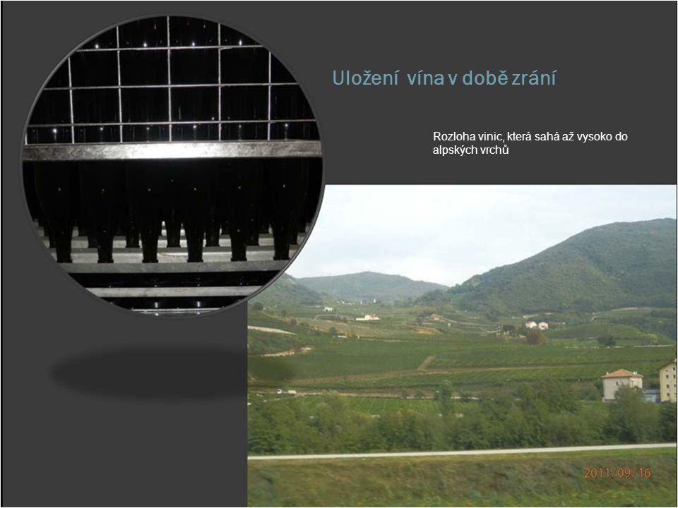 Uložení vína v době zrání Rozloha vinic, která sahá až vysoko do alpských vrchů