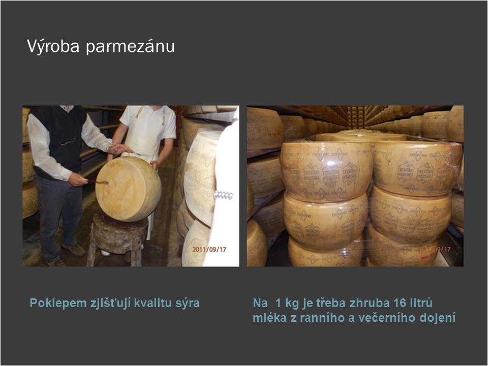 Výroba parmezánu Poklepem zjišťují kvalitu sýraNa 1 kg je třeba zhruba 16 litrů mléka z ranního a večerního dojení